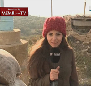 Lebanese Reporter Throws Stone at Israeli Border